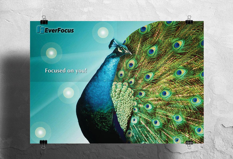 EverFocus / poster